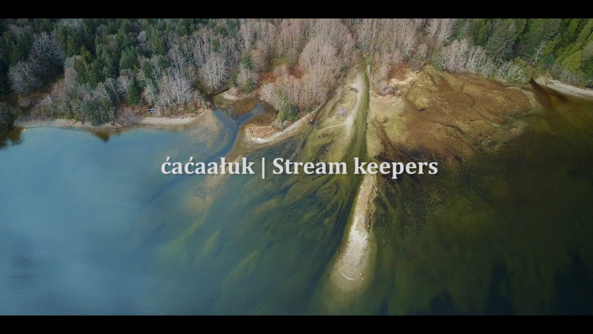 Photo - cacaaluk | Stream keepers